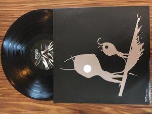 Gravity Vinyl